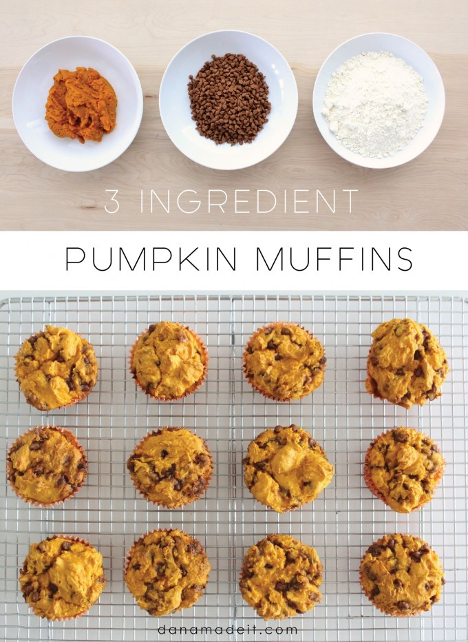 3 Ingredient Pumpkin Muffins on MADE