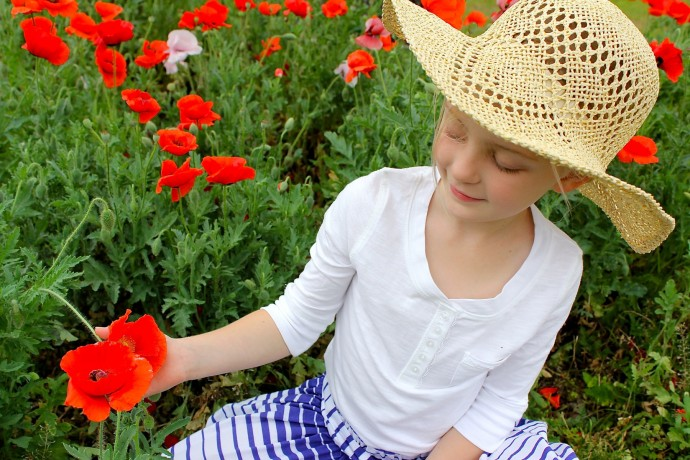 Fields of Poppies on MADE Everyday with Dana Willard