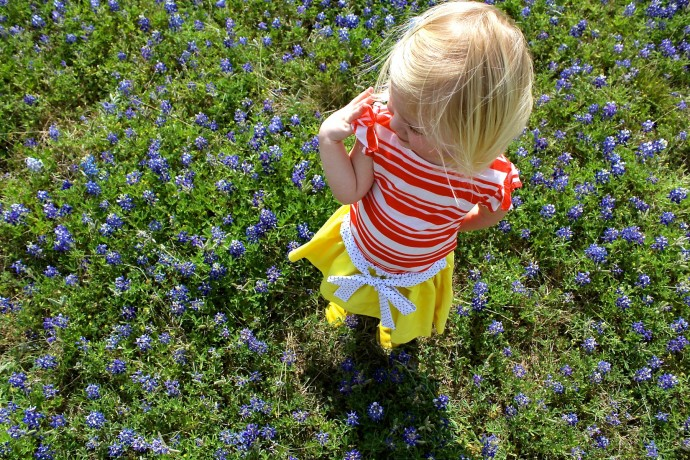 Texas Wildflowers