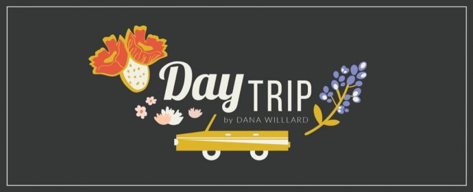 Day Trip fabric collection from Art Gallery Fabrics designed by Dana Willard