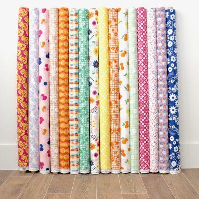 Fiesta Fun Fabrics by Dana Willard for Art Gallery Fabrics