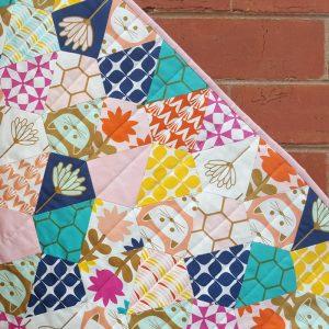 Blush Fabric Collection designed by Dana Willard for Art Gallery Fabrics